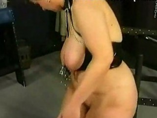 chubby d like to fuck serf receives metal clamps