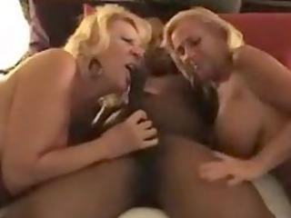 dee dicarlo and mandi mcgraw interracial sex scene